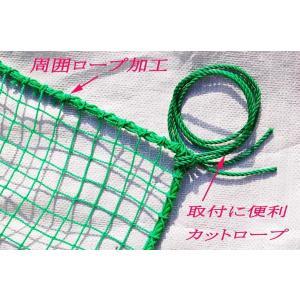 ゴルフネット 2m×3m