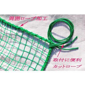 ゴルフネット 3m×3m
