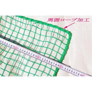 ゴルフネット 3m×8m