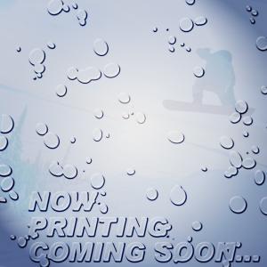 ダイス ゴーグル 19-20 DICE HIGH ROLLER NAV(104) POLARIZED GRAY/MIT BLUE HR90893NAV ジャパンフィット 日本正規品|sports-ex