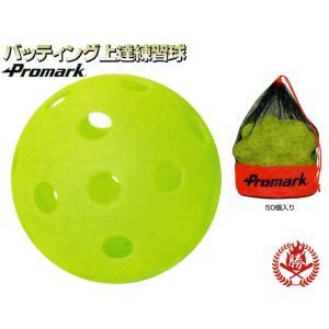 プロマーク バッティング上達練習球 50個入り 野球 ボール トレーニング用品 htb-50