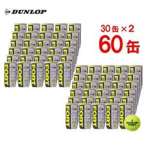 「ボールバッグプレゼント」DUNLOP ダンロップ FORT フォート [2個入]2箱セット 30缶×2=120球 テニスボール|sportsjapan
