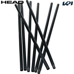 ヘッド HEAD テニスコート用品  POLES(ポール)8本 287541|sportsjapan