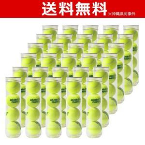 DUNLOP(ダンロップ)プラクティス1箱(30缶=120球)テニスボールKPI+|sportsjapan