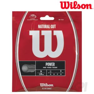 「2017新製品」Wilson ウイルソン 「NATURAL 16  ナチュラルガット 16  1.30 WRZ999800」硬式テニスストリング ガット KPI+|sportsjapan