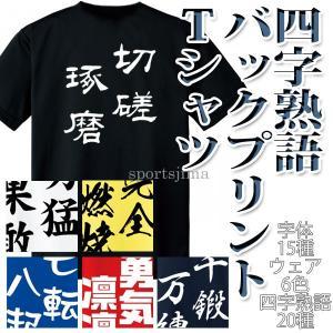 吸汗速乾 メッセージ Tシャツ 半袖  ◆Glimmer 00300-ACT  洗濯してもすぐ乾く、...
