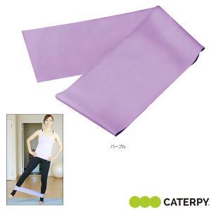 CATERPY フィットネストレーニング用品  エクサループバンド ミディアム/EXE LOOP BAND/MEDIUM(CF-021) sportsplaza