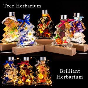 ハーバリウム クリスマス ツリー / プレゼント ギフト 誕生日 開店祝い 母の日 プリザーブドフラワー