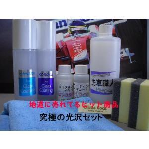 ガラス系コーティング剤ポリマー、ワックスいらずのガラス系コーティング剤・究極の光沢セット60ml|springwood