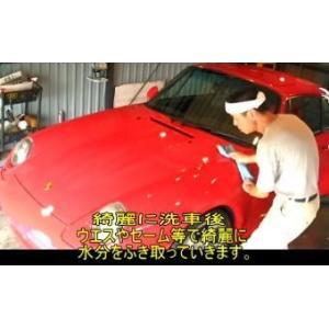 ガラスコーティング ピンク60ml&コロピカLL欲張りセット|springwood|03