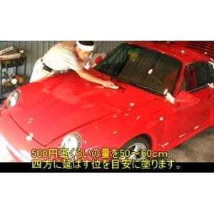 ガラスコーティング ガラスコーティング剤  ピンクダイヤモンド60mlザラザラset|springwood|04