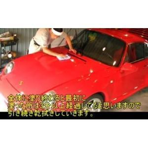 ガラスコーティング ガラスコーティング剤  ピンクダイヤモンド60mlザラザラset|springwood|05