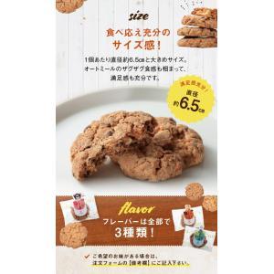 クッキー 単品 プチギフト 退職 お菓子 個包装 ホワイトデー 結婚式 プレゼント|srr-shop|04