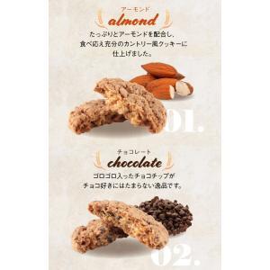 クッキー 単品 プチギフト 退職 お菓子 個包装 ホワイトデー 結婚式 プレゼント|srr-shop|05