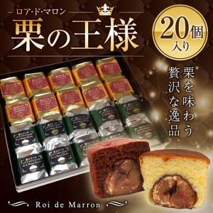 マロンケーキ 20個入り プレーン&ショコラ ロアドマロン ギフト お歳暮 プレゼント 誕生日プレゼント お菓子 詰め合わせ 内祝い|srr-shop