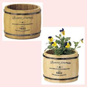 『杉』丸タイプ鉢「17.5×13.5cm」/2種類|sshana