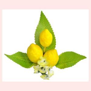 レモン型クリップ4Pセット|sshana