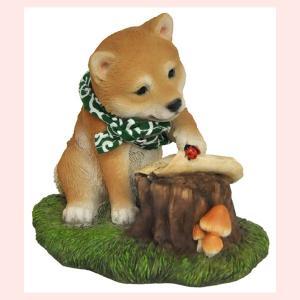 レジン製のリアルドッグオブジェ/柴犬(柴助・地図)|sshana