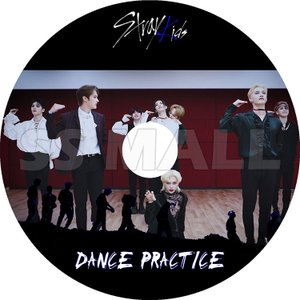 K-POP DVD Stray Kids DANCE PRACTICE ストレイキッズ KPOP DVD|ssmall