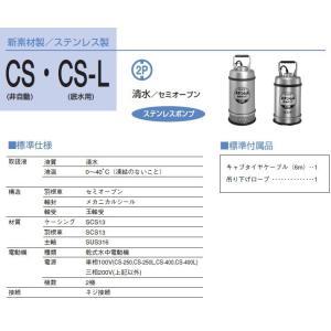寺田ポンプ ステンレス製 水中ポンプ 低水位排水ポンプ CS-250L/CS-250TL 低水位ポンプ 清水 汚水 ssnet 02