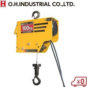 OH 電動チェーンホイスト 100kg DWH-100 100V チェーンブロック 小型 荷揚げ ウインチ 積荷道具 ssnet