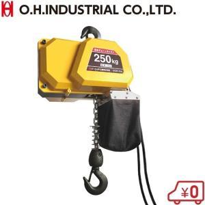 OH 電動チェーンホイスト 250kg DCH-250 100V チェーンブロック 小型 荷揚げ ウインチ 積荷道具 ssnet