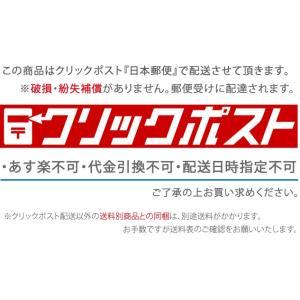 【送料無料/クリックポスト】千吉 剣山 大角型...の詳細画像2