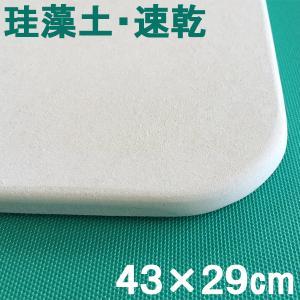 珪藻土バスマット NEW足乾バスマットミニ  日本製 風呂マット 足ふきマット フジワラ化学 吸水 速乾 おしゃれ|ssnet