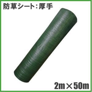 厚手 防草シート 2m×50m 農業資材 雑草防止シート 雑草対策|ssnet