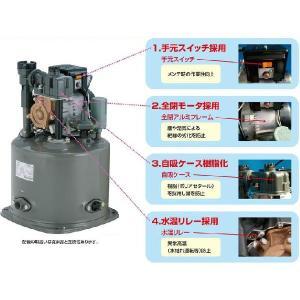 テラル 浅井戸ポンプ 井戸ポンプ ホームポンプ 家庭用給水ポンプ 電動ポンプ PG-157A-5 PG-157A-6 150W/100V|ssnet|02