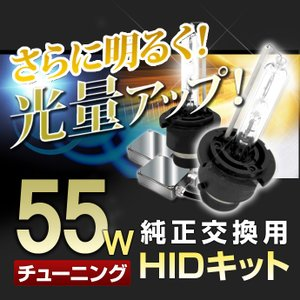 送料無料 55Wチューニング D4C(D4S/D4R) 4500K/6500K 純正交換用 HIDキット|stakeholder