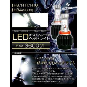 高出力LEDヘッドライト H8/H11/H16/HB4(9006)  30W 3600Lm 『ブラックホーミングX』|stakeholder|02