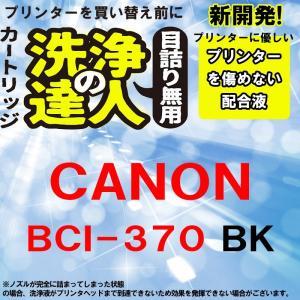 洗浄の達人 プリンター洗浄液 キヤノン CANON BCI-370XL BCI370 BK ブラック|standardcolor