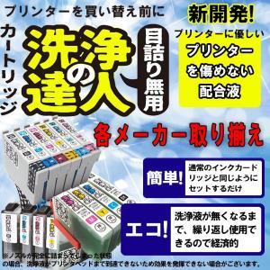 洗浄の達人  エプソンプリンター目詰まりIC6CL70L(洗浄液セット) 目詰まり解消 洗浄カートリジクリーニング液|standardcolor