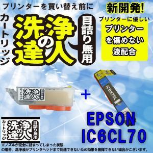 洗浄の達人と互換インクセット  エプソンプリンター目詰まりIC6CL70L(BK ブラック)洗浄液 ic70Lヘッドクリーニングカートリッジ|standardcolor