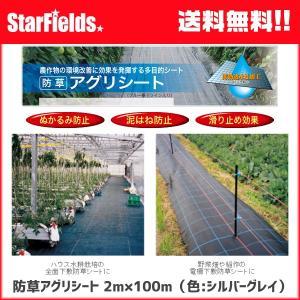 防草アグリシート 2×100m(色:シルバーグレイ)【代引き不可商品】 防草シート|star-fields