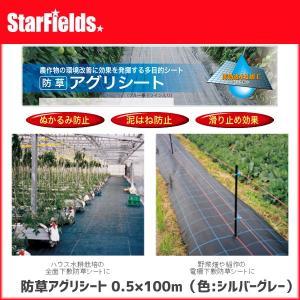 防草アグリシート 0.5×100m(色:シルバーグレー)【代引き不可商品】 防草シート|star-fields