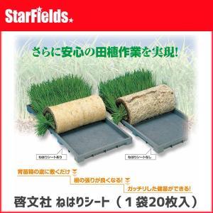 育苗 KEIBUN:ねはりシート1袋(20枚入り) 【代引き不可】|star-fields