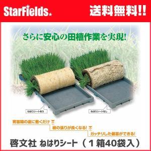育苗 KEIBUN:ねはりシート1箱(40袋入り) 【代引き不可】|star-fields