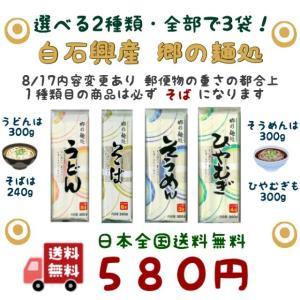 選べる うどん そば そうめん ひやむぎ 3袋 白石興産 郷の麺処 500 ポイント消化 送料無料  メール便