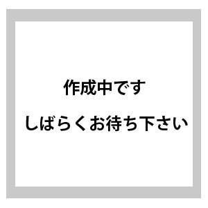 日産純正/PITWORK 研磨スポンジパット(1枚入り)#4000(径125mm) 1枚 KA590-40090|star-parts