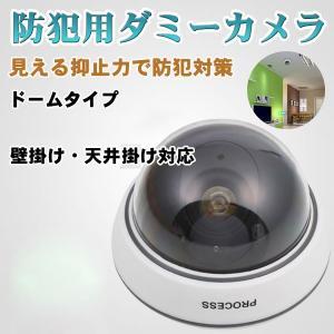 【仕様】 商品種類:ドーム型ダミーカメラ パワー:3x AA/単三電池(付属しません)  カラー:ホ...