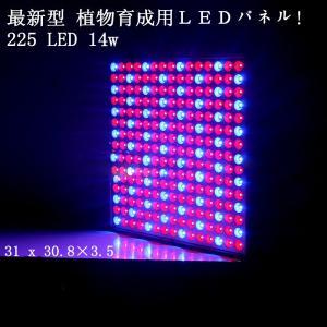 LED植物育成 植物育成ライト 225LED 14W 最新のSMD使用 水耕栽培 パネルライト 園芸 プラントライト レッド&ブルー