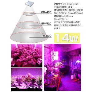 LED植物育成 植物育成ライト 14W 225...の詳細画像4