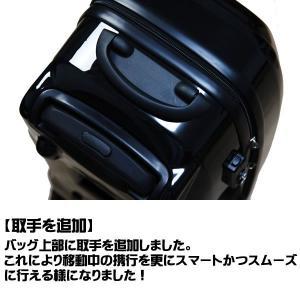 プロテックスレーシング R-1 キャリーケース star5 04