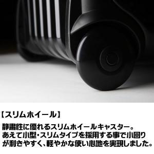 プロテックスレーシング R-1 キャリーケース star5 05