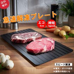 急速解凍 プレート 解凍 放熱 刺身 肉 冷凍食品 エコ 時短 送料無料