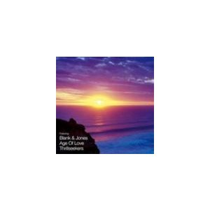 輸入盤 PAUL VAN DYKE / PERFECT REMIX VOL. 2 [CD]|starclub