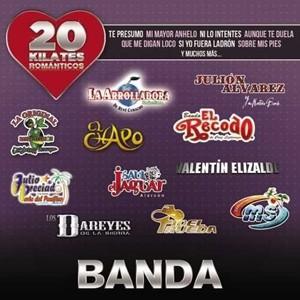 輸入盤 VARIOUS / 20 KILATES ROMANTICOS BANDA [CD]|starclub