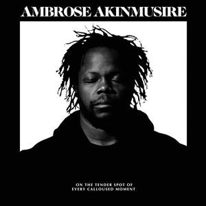 輸入盤 AMBROSE AKINMUSIRE / ON THE TENDER SPOT OF EVERY CALLOUSED MOMENT [CD]|starclub